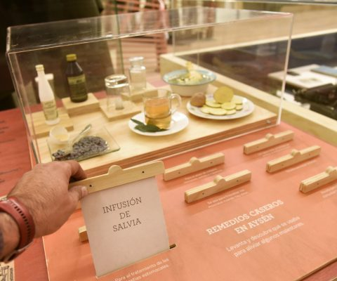 Juego de asociación con réplicas Museo Regional de Aysén